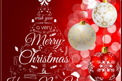 Toyo Kitchen Style kính chúc khách hàng Giáng sinh an lành và năm mới bình an!